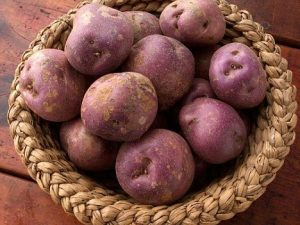 Arran Victory Seed Potatoes In Basket