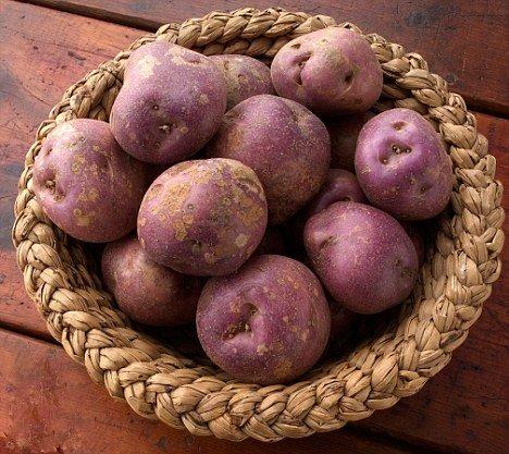 Arran Victory Seed Potatoes In Basket