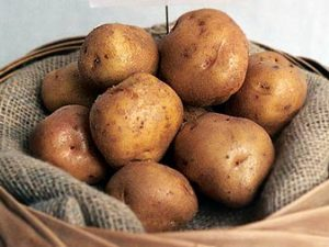 British Queen Seed Potatoes in sack