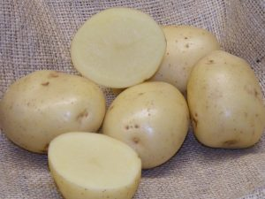 Sharpe's Express Seed Potatoes