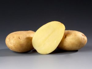 Ramos Seed Potatoes