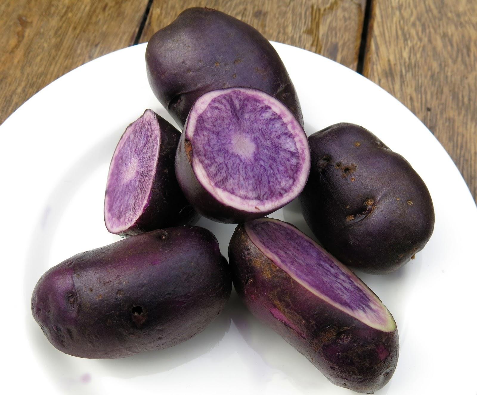Необычные сорта картофеля фото